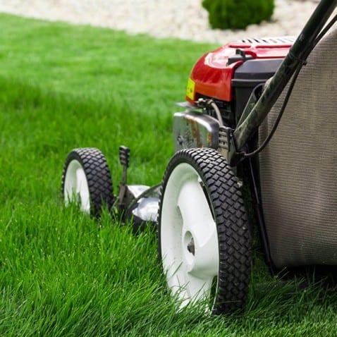 Lawnmower Mowing Lawn